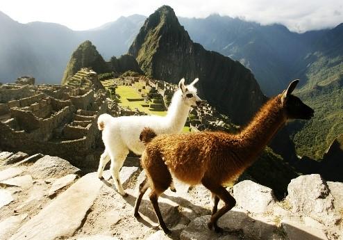 Cuzco et le Machu Picchu