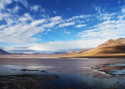 A la découverte de la Bolivie