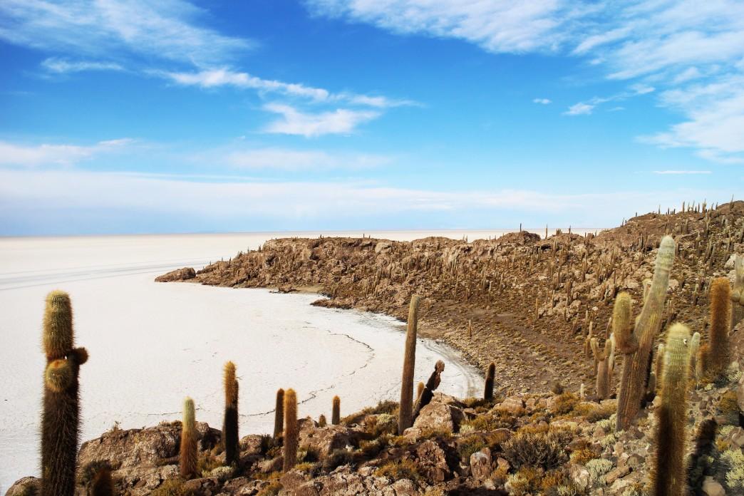 Ile de Incahuasi au milieu du Salar - Voyage en Bolivie
