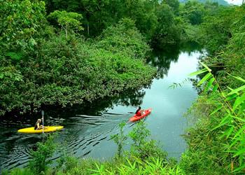 Extension en Amazonie