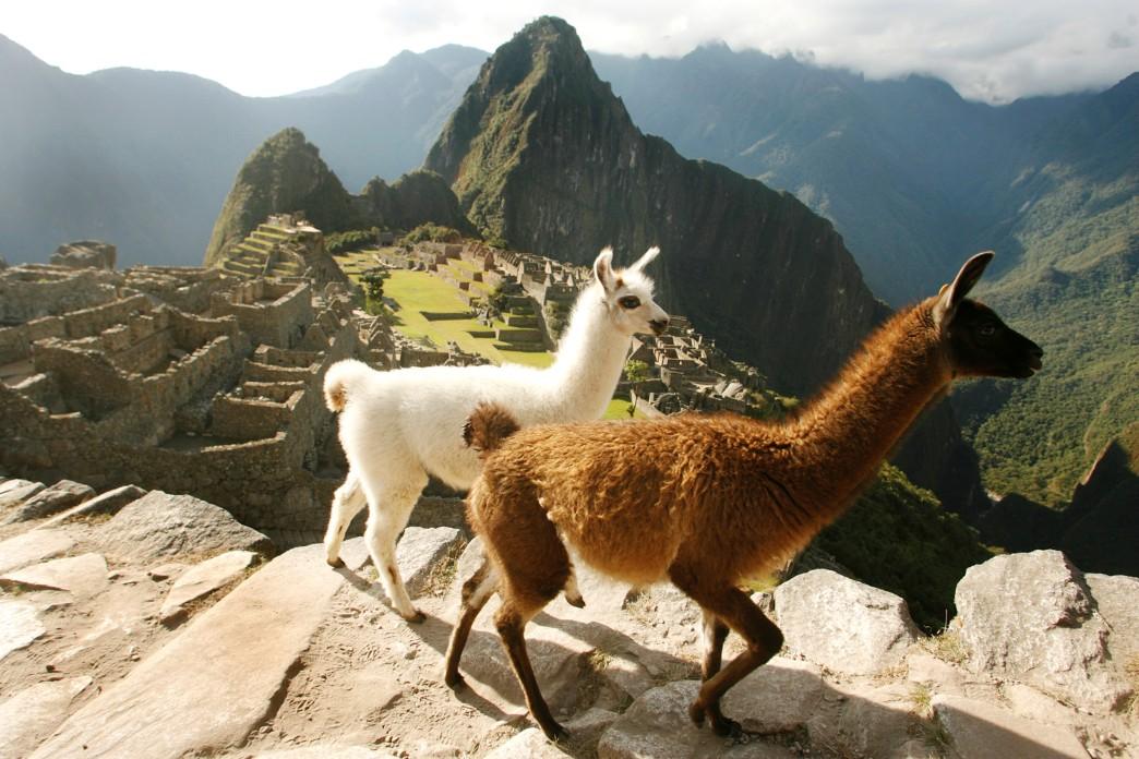 Julio del 2009.  Ruinas de Machu Picchu.  Fotos: Enrique Castro-Mend'vil